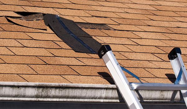 Services Cubes Roofing